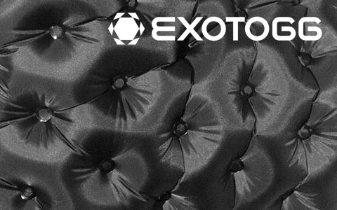 Intro-Exotogg.jpg